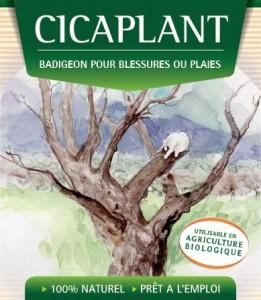 cicaplant vegelia